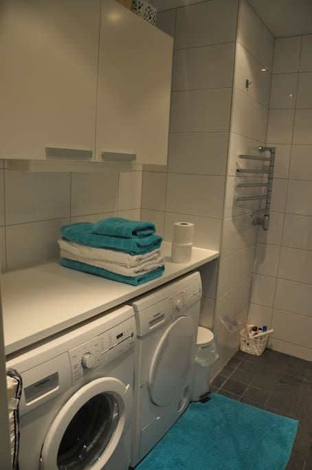 Spacious bathroom with washer, dryer, a shower etc.