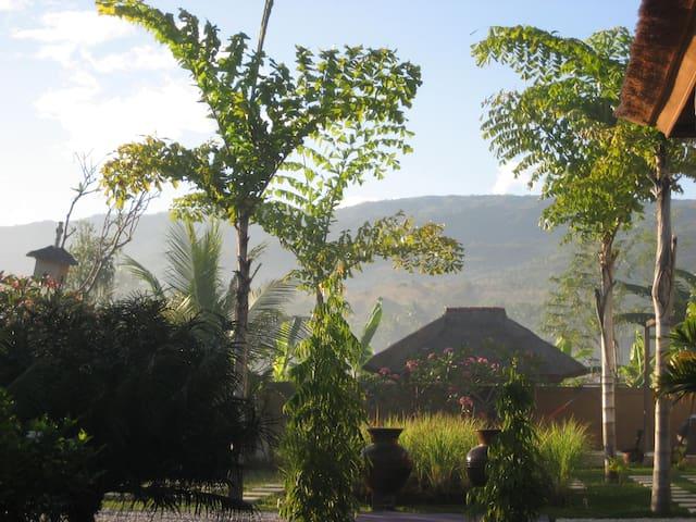 Ein einmaliger Ort auf Nord Bali