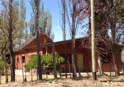 Country home in Argentine Vineyard