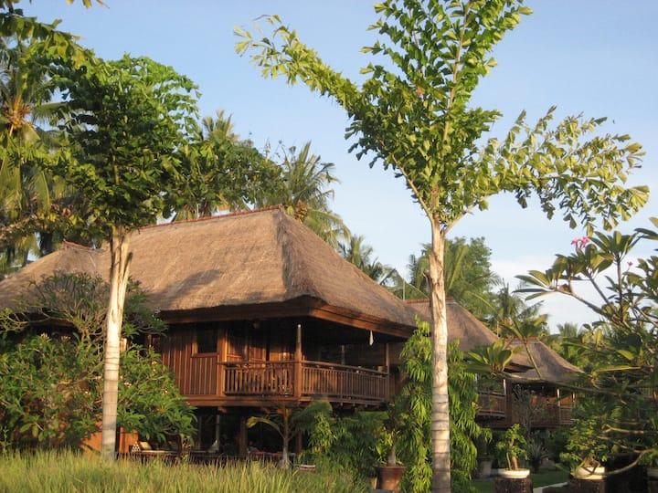 Un séjour unique en Bali Indonesie