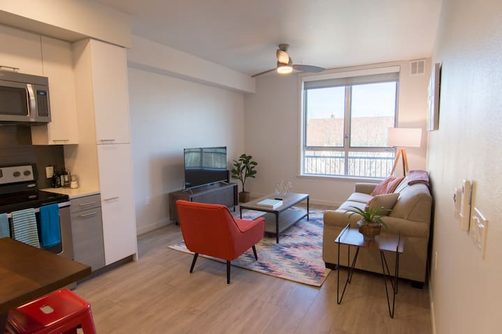 Spacious 1BD/1BA Apartment - Walk to the Capitol!