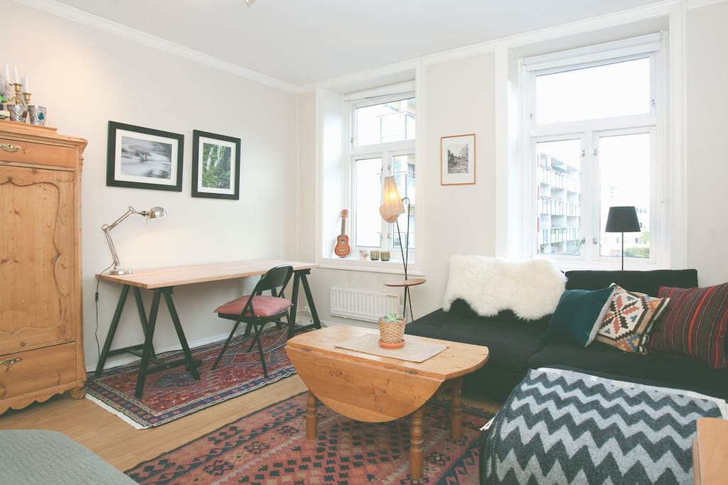 The room has two large windows, giving the apartment plenty of natural light.