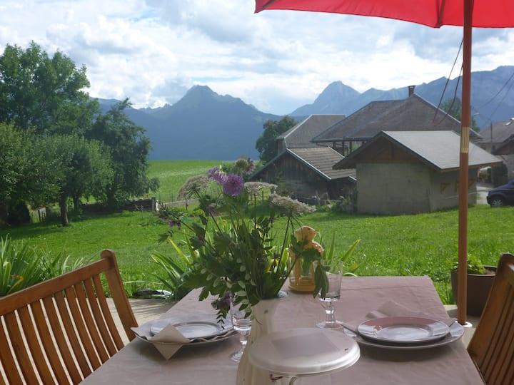 Beautiful studio in the Alpes