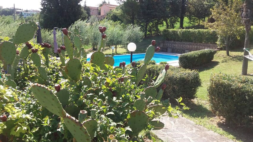 Villa con piscina sui colli marchigiani