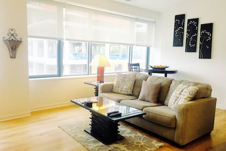 Webster Square gorgeous one bedroom - Chicago