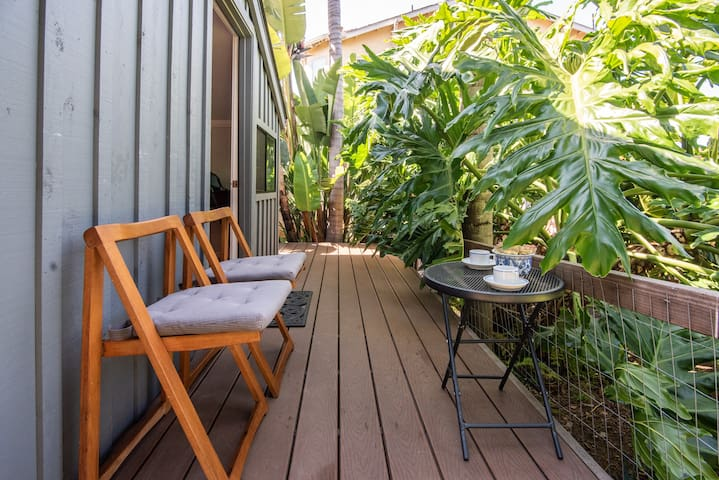 Cottage deck and happy philodendron.