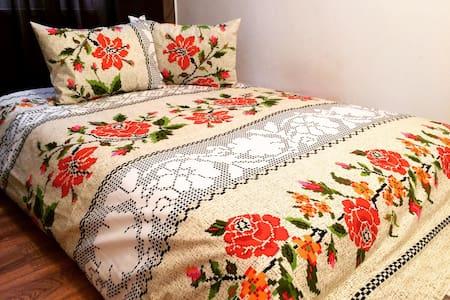 Traditional apartment Baia Mare