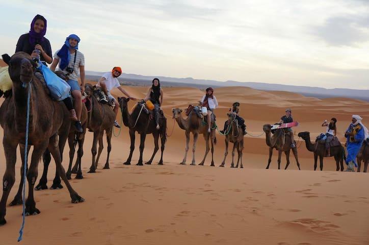 dune merzouga camp - Algiers - Tent