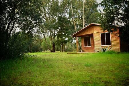 Cabaña en plena naturaleza cerca de Yumbel.