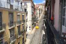 Funicular tram, everyday, up and down the street at Rua da Bica at 5 mn walk