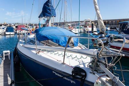 Saiboat in the marina + wifi - El Puertito de Güimar