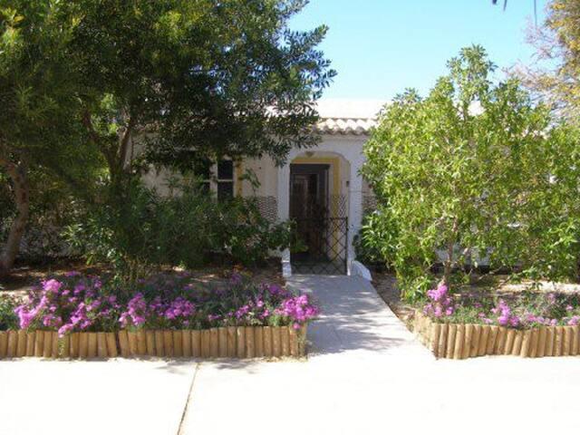Island House #Armona