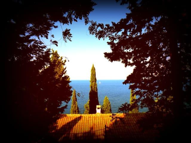 Sea-side holiday villa in Paxos - Gaios - Villa