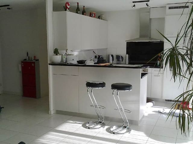 Shared Apartment - in 8107 Buchs - Buchs - Apartmen