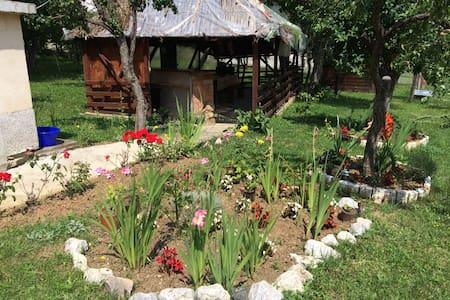 One of a kind family home in Serbia - Valjevo - Rumah