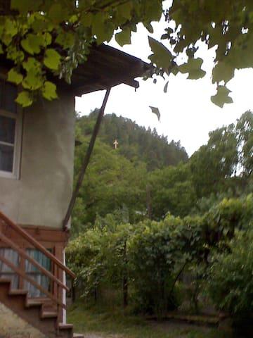 Borjomi_Likani homestay - Likani - Haus