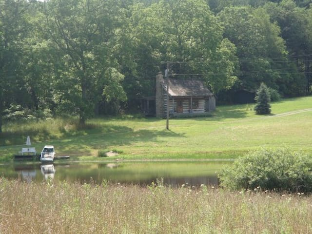 2 acre pond and cabin in the distance