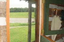 View of pond from the Dutch Door