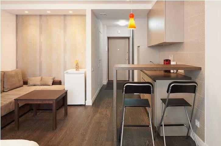 Modern one bedroom apt - Vilnius - Lägenhet