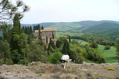 In the heart of Tuscany's most beau - Casole D'elsa, Volterra