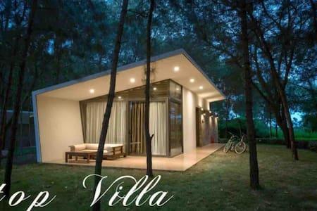 Peaceful HILLTOP villa / Flamingo Dai Lai/FULL 1Br
