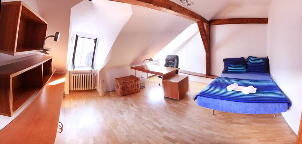 Classy ATTIC in CITY-CENTER - Praha - Loteng Studio