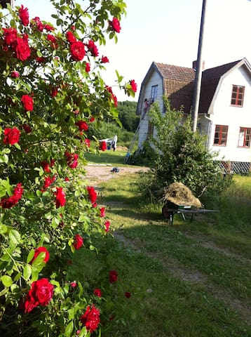 Charming house near Westcoast water - Brastad - Casa