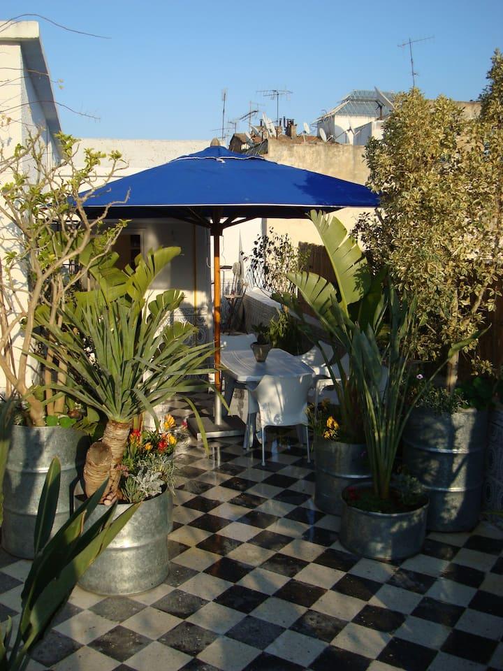 Une terrasse de 40 m2 exceptionnellement décorée de plantes et arbustes tropicaux avec transats et douche externe ; table a manger ; parasol  pour bronzer et farniente. Luminosité réglable pour vos soirées décontractées durant les chaleurs de l'été.