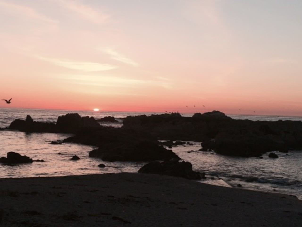 Walk to our Sunset on the Monterey Bay.  Go to the Aquarium or Steinbeck's Cannery Row.