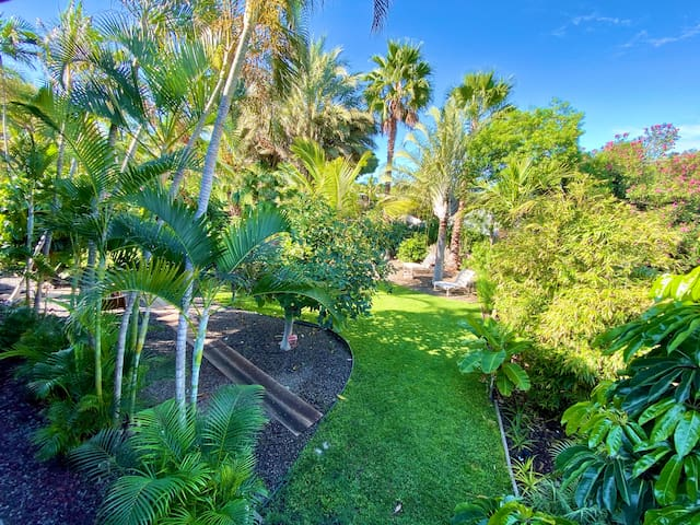 Beautiful lush landscaping surrounds the Hale Aloha.