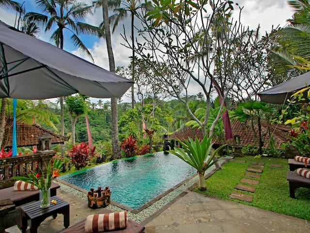 Spectacular 2BR pool villa with jungle valley view
