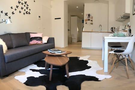 Charming apartment in a Brussels Hôtel de Maître