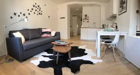 Appartement de charme dans un Hôtel de Maître