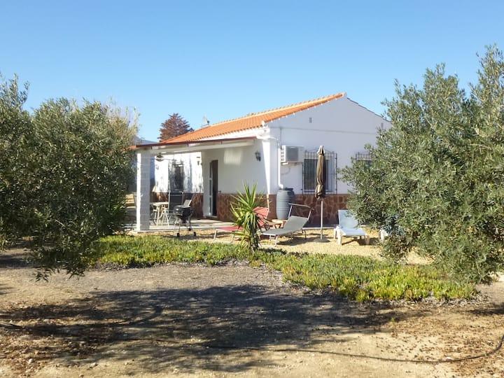 Idyllic, 2 bedrooms, garden, beautiful pool, wifi.
