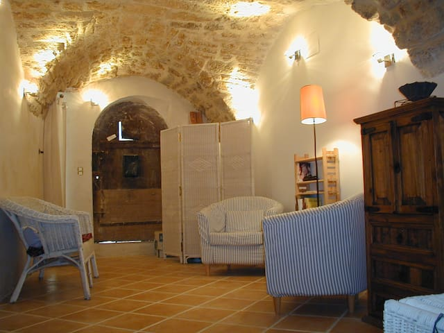 House in Languedoc wine village