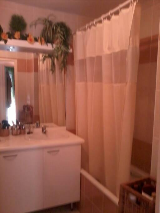 salle de bains avec baignoire ...