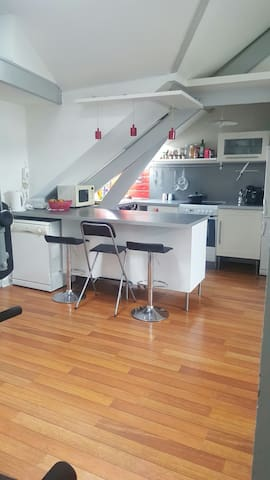 Grand T2 lumineux typé Loft - Reims - Apartment
