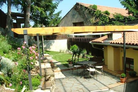 Apartment Ida - Pedrovo - Apartment