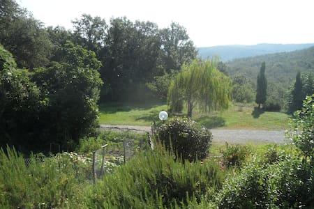 Le Cetine: a paradise in Maremma - Chiusdino