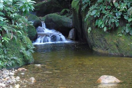 Temporada na Floresta do Pico - Santo Aleixo - Magé - Cabin