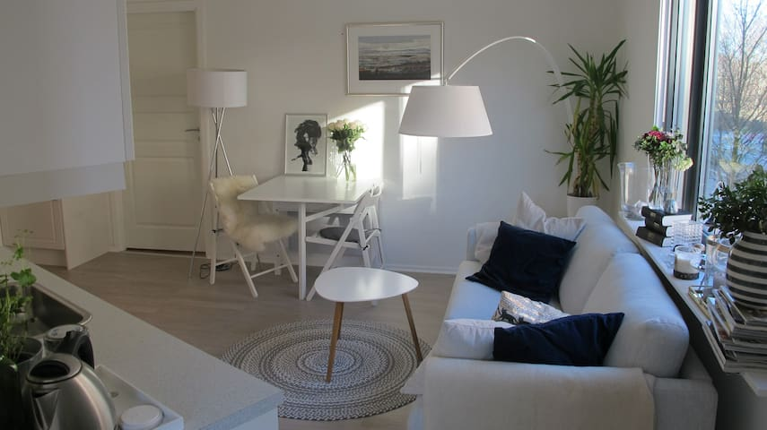 Room in cosy and modern apartment - Oslo - Apartment