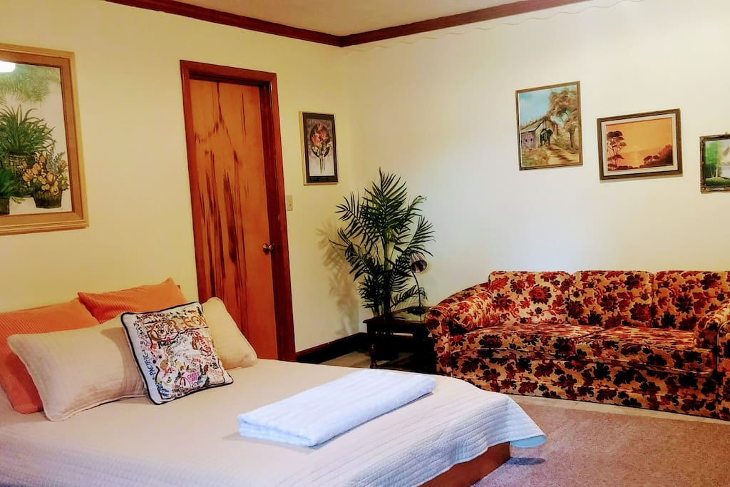 Spacious living area with comfortable brand new queen sized-bed.