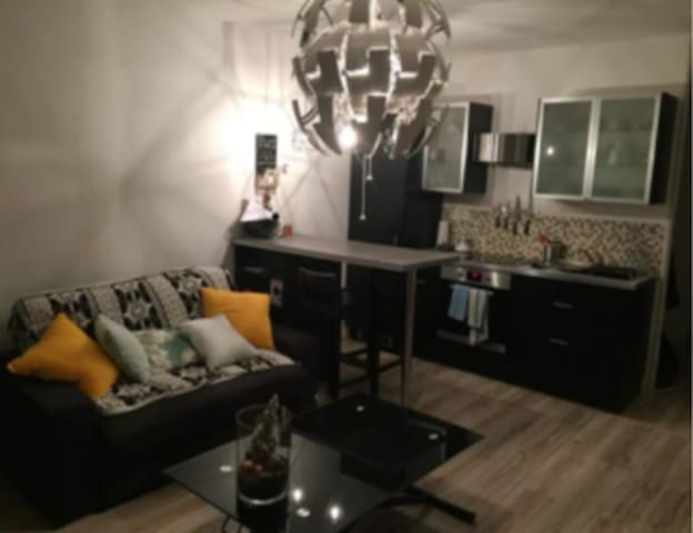 Appartement cosy, refait à neuf à Lille!