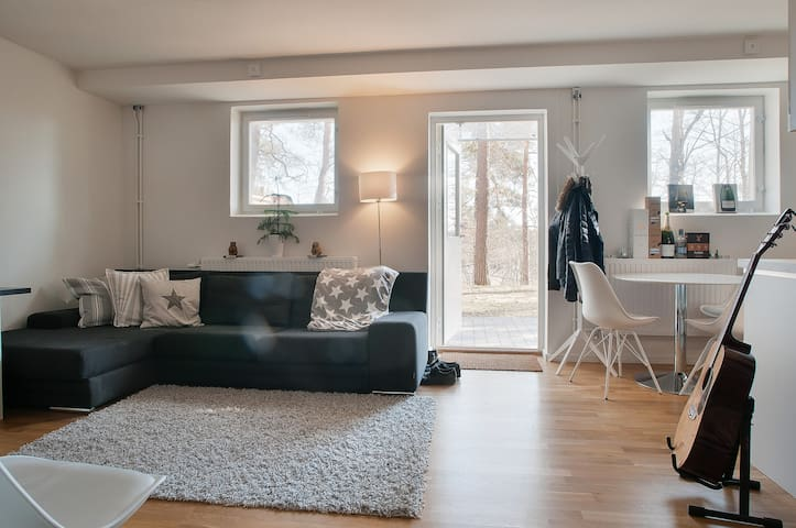 34 kvm cozy apartment for himself in Stockholm - Stockholm - Apartemen