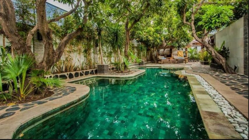 Hidden Gem with fast wifi / Pool, AC and TV - Bed & Breakfast