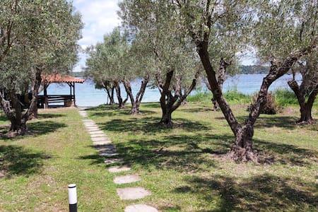terraCYAN - private beachfront house