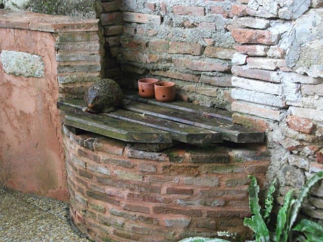 décoration côté puits avec un hérisson