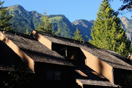 """Mount Baker Condo in the Forest! -""""Mountain Boy"""""""