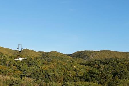 The Green House, Bohol - Loon - Loma-asunto