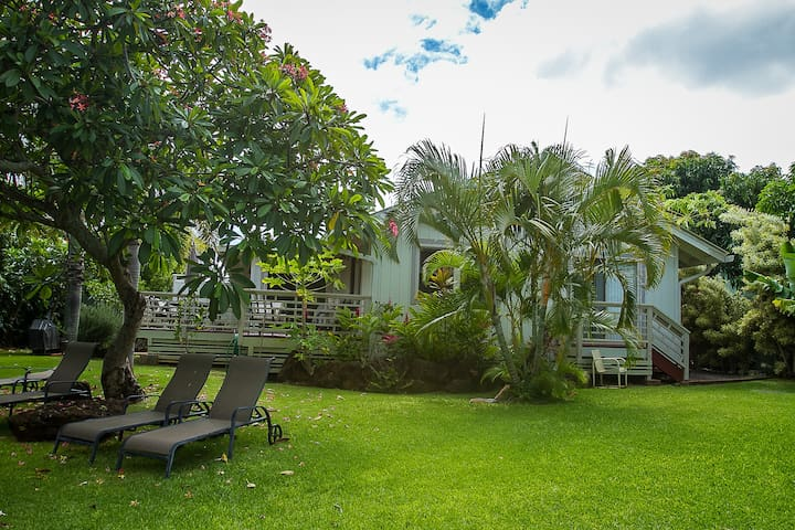 4 BR plantation home with pool steps to Poipu